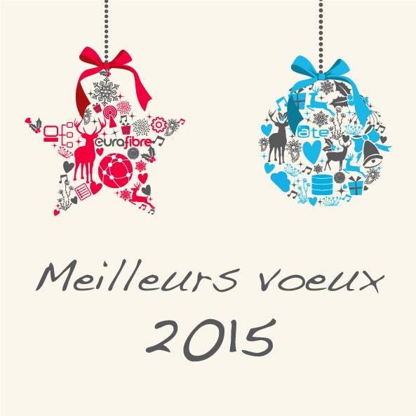 Vœux ATE Eurafibre 2015