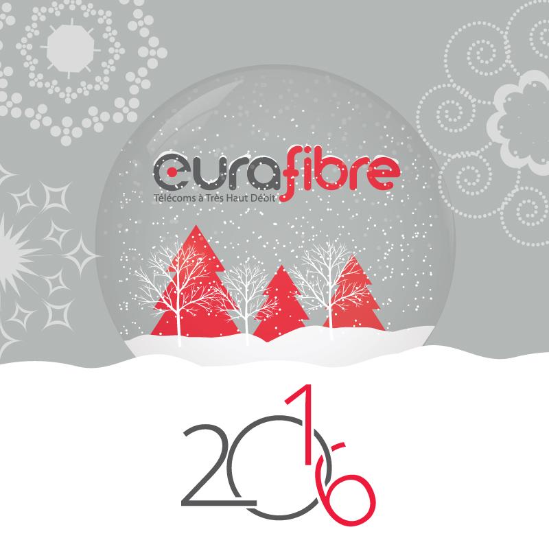 Vœux Eurafibre 2016