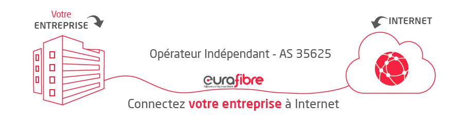 Accès Internet fibre optique pro opérateur Eurafibre