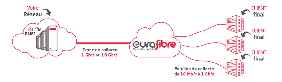 Offre de collecte fibre optique opérateur Eurafibre